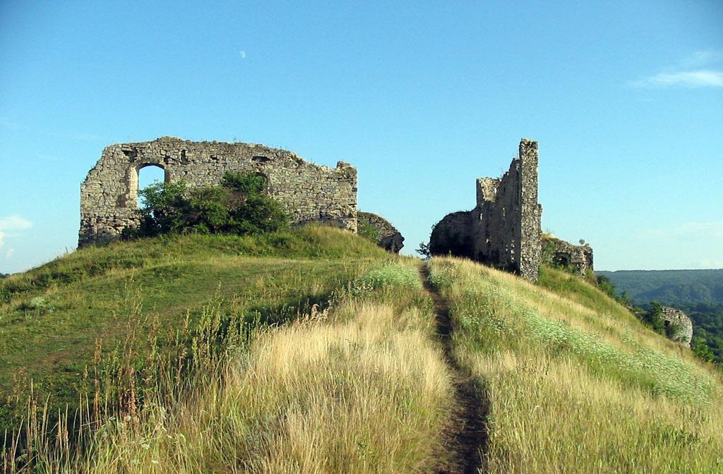 Чорнокозинецький замок