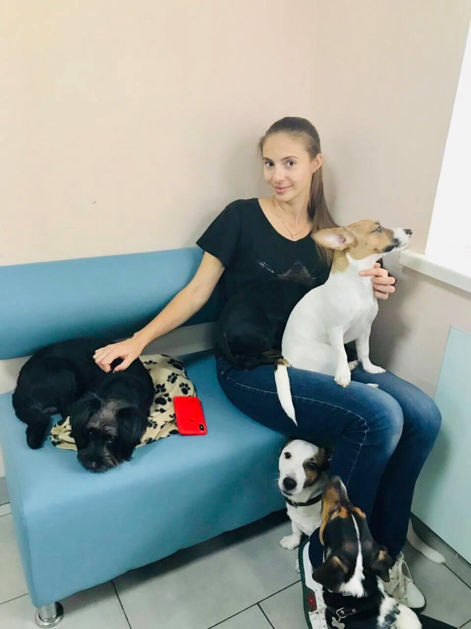 готель для собак в Україні