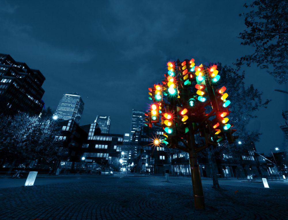 Міжнародний день світлофора